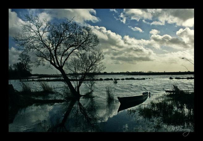 http://la-rose-noir.chez.aliceadsl.fr/BlogPhotoLoireAtlantique/briere_paysage_photographie_photographe_chaland_bateau_coule_epave_mrtimmy.jpg